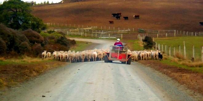 Las servidumbres en el País Vasco