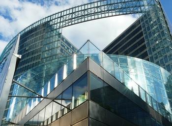 Desarrollo de la ley de apoyo a los  emprendedores y su internacionalización