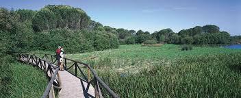 Se aprueba el Plan de turismo de naturaleza 2014-2020