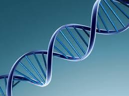 La toma de muestras de ADN con el consentimiento del imputado necesita la asistencia de letrado