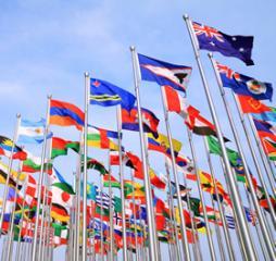 La competencia en materia de asilo corresponde a la Sala de lo Contencioso-Administrativo de la Audiencia Nacional