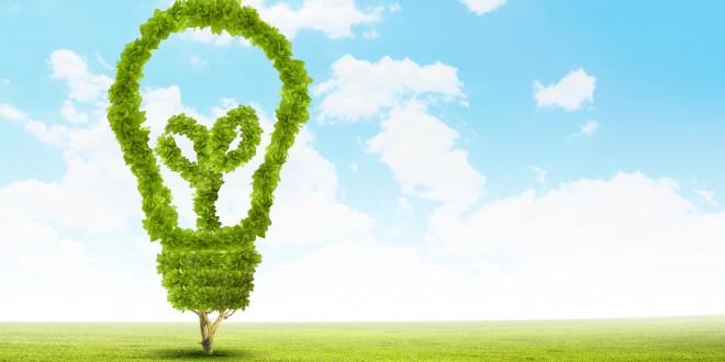 El principio de cautela en la gestión administrativa del Medio Ambiente