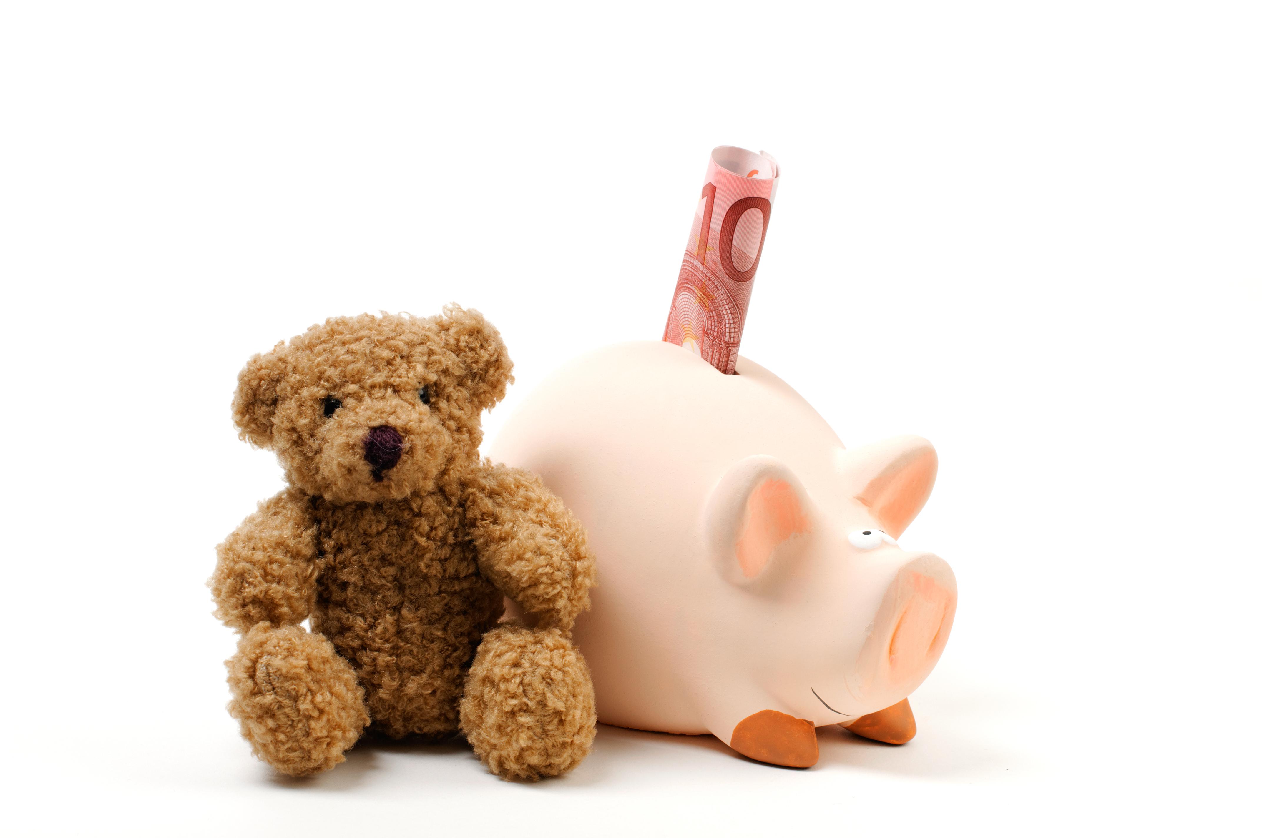 alimentos hucha dinero oso de peluche