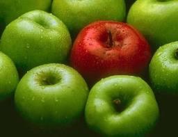 fruto arbol envenenado prueba ilicita manzana roja