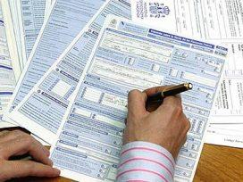 El Sistema de Suministro Inmediato de Información, ¿una ventaja o un inconveniente?
