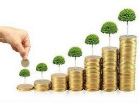 Ayudas en materia de seguros agrarios para graduados universitarios