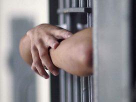 La modulación de la imposición de una pena de multa a una persona física y a una persona jurídica