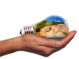 Obligación de ponderar el interés público vinculado a la protección medioambiental