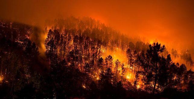 ¿Qué pena puede imponerse por ser el responsable de un incendio?