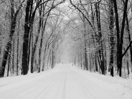 Cómo pueden reclamar los afectados por la vía civil y administrativa por las nevadas en la AP6