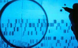 Garantías en la obtención de la prueba de ADN en el procedimiento penal