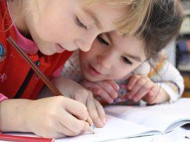 Se inadmite la cuestión de la inconstitucionalidad contra el Decreto-Ley3/2017 de Pluralismo en las escuelas de la Comunidad Valenciana