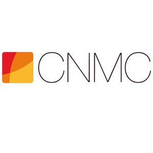 La Audiencia Nacional estima parcialmente un recurso contra un expediente del CNMC