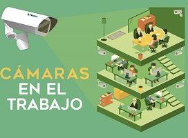 Un juez de Pamplona dicta la primera sentencia sobre la validez de la videovigilancia para acreditar un despido disciplinario