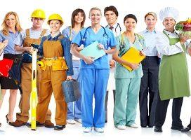 Se regula el Catálogo de Especialidades Formativas y su sistema de gestión, de manera que responda con agilidad a las demandas de formación de los sectores y ocupaciones emergentes
