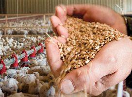 Se publican las tablas salariales para 2018 del Convenio colectivo de la fabricación de alimentos compuestos para animales