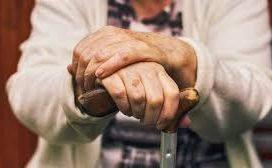 El cobro de derechos de autor es compatible con la percepción de la totalidad de la pensión contributiva