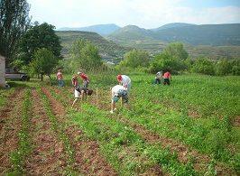 Se conceden subvenciones a programas plurirregionales de formación dirigidos a los profesionales del medio rural