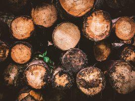Se condena a tres miembros de una cooperativa agrícola de un delito medioambiental