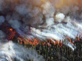 Se publica el Plan de actuaciones de prevención y lucha contra los incendios forestales 2019
