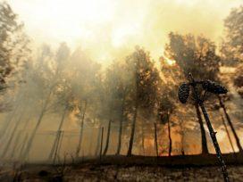 Condenado a cuatro años de cárcel al autor de un incendio que calcinó 180 hectáreas en Galicia