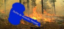 El Código Penal castiga con hasta 20 años de cárcel por provocar un incendio